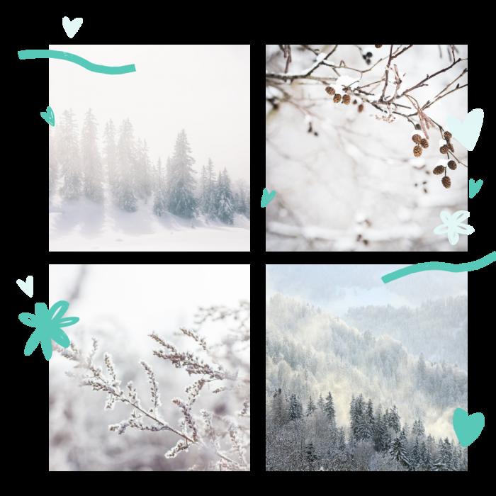 moodboard-winter-2